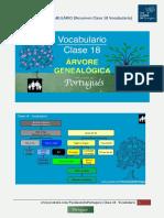 Resumen Clase 18 Vocabulario - Tus Clases de Portugues