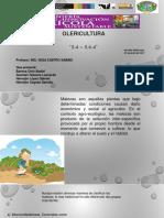 Olericultura Temas 5.4 -5.6.4