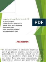 adaptacion biologia