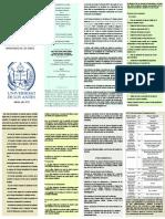 Instructivo Ingreso PDI_Ula