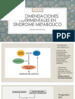 Recomendaciones Nutrimentales Para Síndrome Metabolico