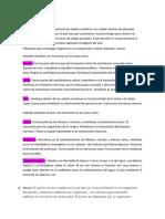 Documento de Nacho (1)