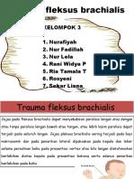 Trauma Fleksus Brachialis Ppt