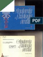 Carmaciu Radu et al Anatomia si fiziologia umana Indrumar pentru elevi rotit.pdf