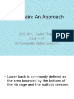 Back Pain an Approach