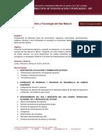 Diplomado en Gestión y Tecnología del Gas Natural -UPSA.pdf