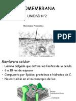 Biomembranas 2017 Parte I