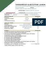 Ejemplo de Protocolos Acensores y Minicargas