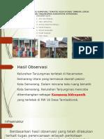 TAMBAK LOROK.pptx