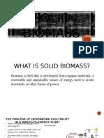 Solid Biomass 2.0 (1)