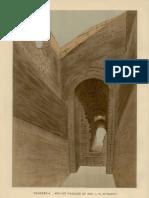 Petrie Dendereh