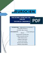 inv-NEUROCIENCIAS.docx
