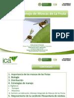 ICA-Moscas-de-las-Frutas.pdf