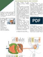 Enfermedades Gastrointestinales Mas Comunes