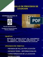 Proceso Licuacion