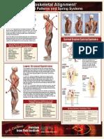 Síndrome cruzado superior e inferior.pdf