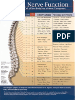 Spinal Nerve Function Chart