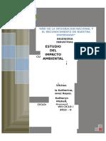 Estudio Del Impacto Ambiental Informe
