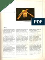 História geral da arte no Brasil (PAG 63- PAG 80)