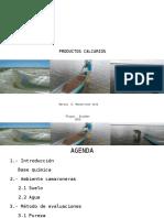 Productos Calcareos - Marita Monserrate - 2015-10-08