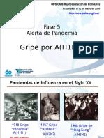 Influenza AH1N1 - OPS Actualizada 12 de Mayo de 2009b