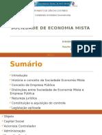Sociedade de Economia Mista (2)