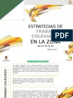 Estrategia Cuerpos Colegiados Bg028