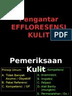 01. Pengantar Effloresensi.pptx