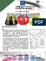 antocianinas.pptx