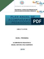 Plan Anual de Acompañamiento Pedagagico-2015-Norith