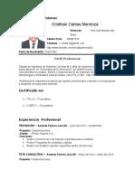 CV Caldas Mendoza Cristhian