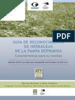 guia_de_reconocimiento_y_manejo_de_pastos_de_la_pampa_deprimida.pdf