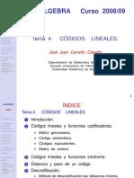 Imprimir_Tema_4_alg.pdf
