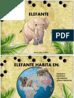 ELEFANTE - MAITE DIAZ Si No Resulta El Otro