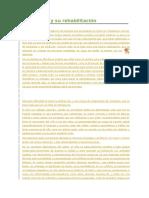 La Disfasia y su rehabilitación.docx