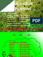 Bryopsida
