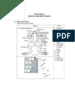 anatomy of vertebrata