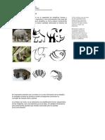 2.- Apuntes Sintesis Gráfica F Yantorno (1)