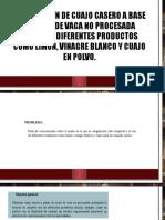 Presentacion Del Proyecto (1)