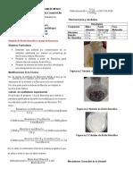Reporte Benzoína Bencilo Acido Bencilico
