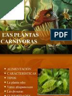 carnivoras.ppt.pptx