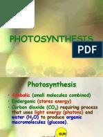 Ppt Photosynthesis OK
