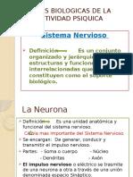 bases biológicas de psicologia