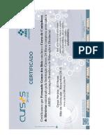 Certificado Do Curso de Contadores de Historia (1)