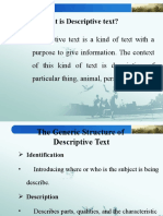 What is Descriptive Text