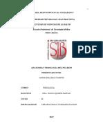 ANATOMIA Y FISIOLOGIA DEL PULMONN12.docx