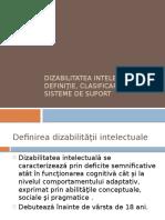 Dizabilitatea Intelectuala- Sisteme de Suport