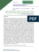 081004.pdf