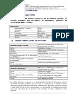PERFIL PUENTE AMAPOLA TICLACAYAN PASCO.docx