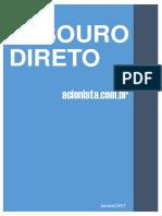 eBook Acionistacombr Tesouro Direto 2017